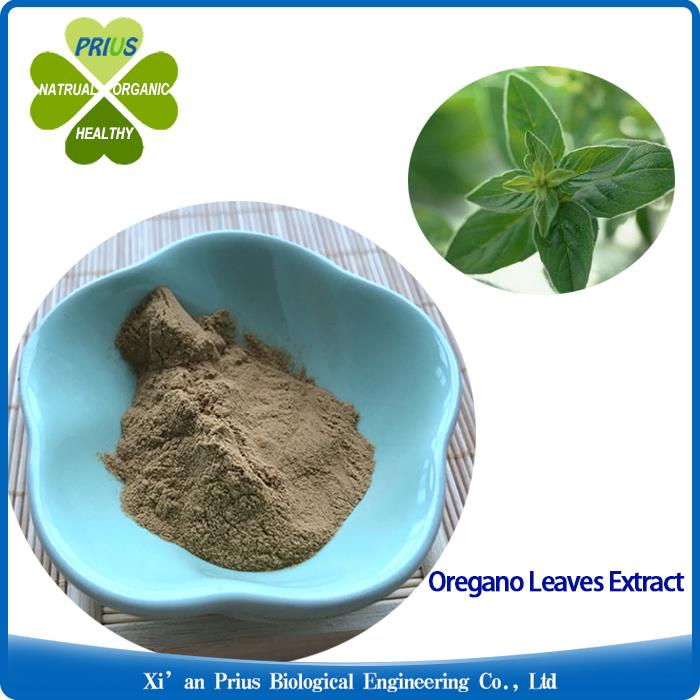 Oregano Leaves Extract Natural 0regano Powder For Cough Oregano Herb Leaf Extract.jpg