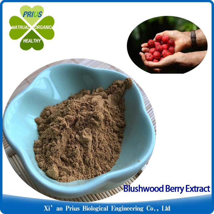 Blushwood Berry Extract.jpg