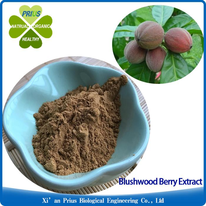 Blushwood Berry Extract Tonking New Released Cancer Healing Tree Nature Blushwood Berry Powder.jpg