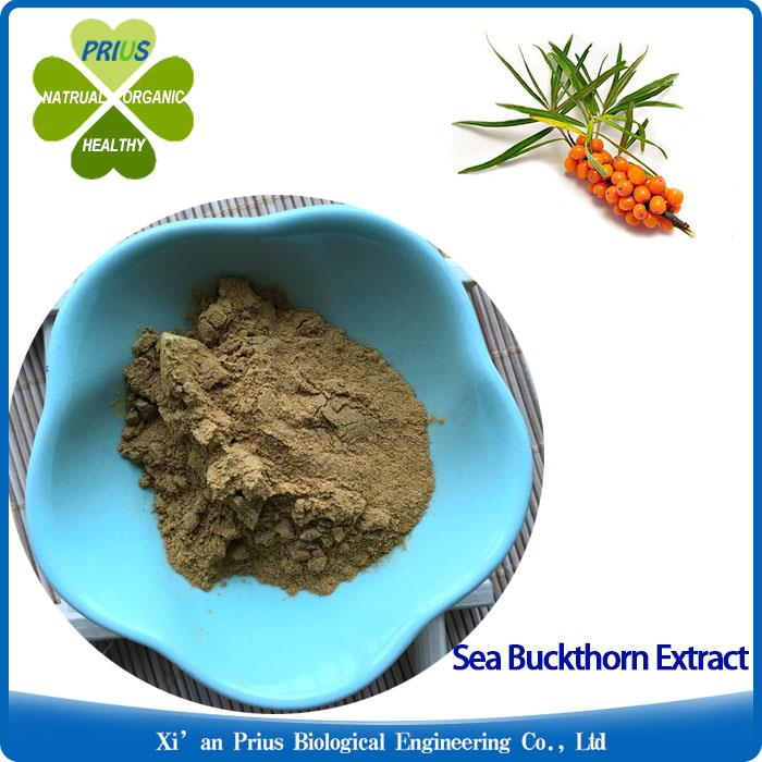 Sea Buckthorn Extract Powder Natural Plant Extract Antibacterial Hippophae.jpg