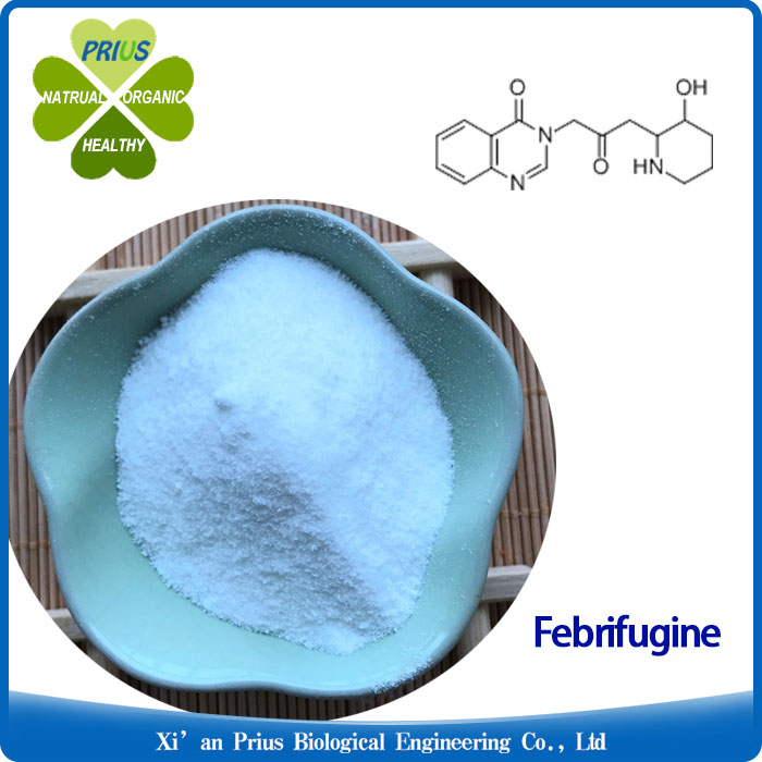 Febrifugine Pure Natural Plant Extract Herbal Powders Dichroa Febrifuga Extract Feerifuqine Powder.jpg