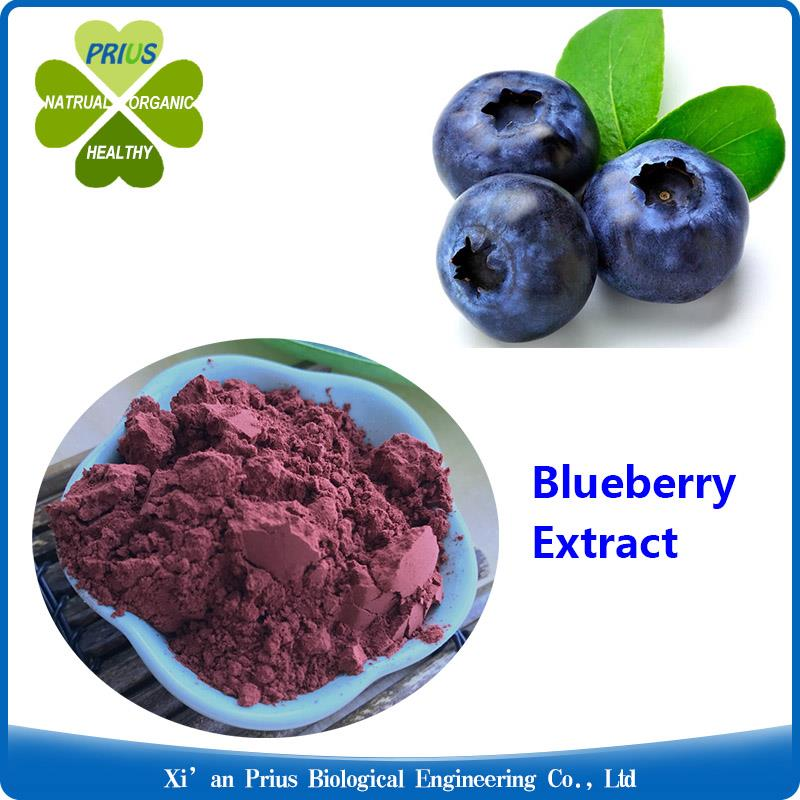 Blueberry Extract.jpg