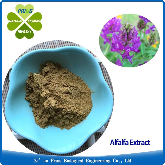 Alfalfa Extract Organic Plant Extract Liver Care Medicago Sativa Extract.jpg