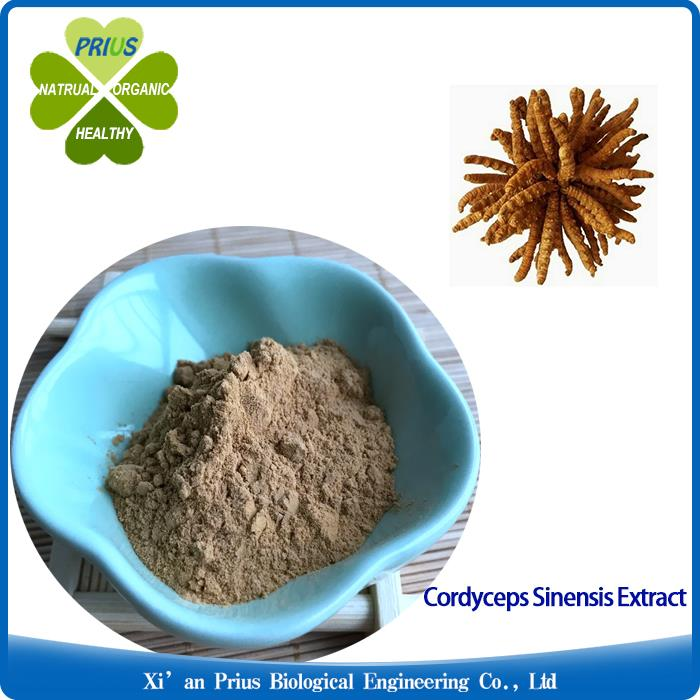 Cordyceps Sinensis Extract Powder  Natural Ingredient  Supplier  Anti-tumor Organic Supplements Cordyceps Extract.jpg