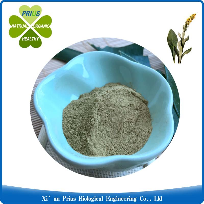 Mullein Leaf extract..jpg