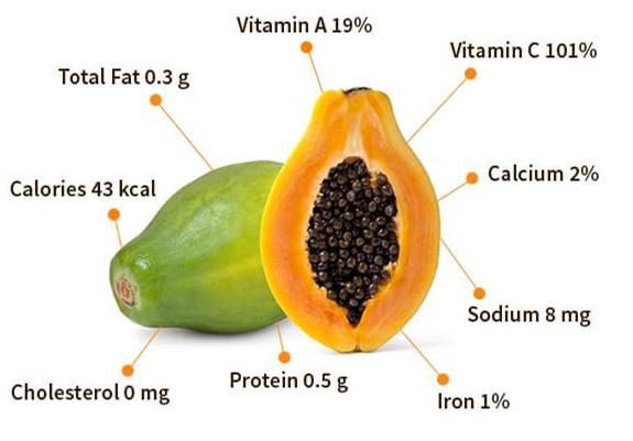 Papaya extract ingredient