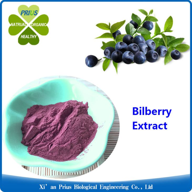 Bilberry Extract Eyesight Improvement Anthocyanidins 25% Cowberry Extract
