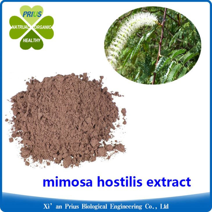 mimosa plant cost