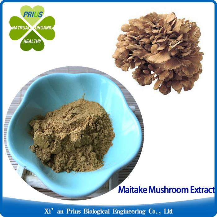 Organic Maitake Mushroom Extract Powder for Cancer Treatment Unique Health Benefits Grifola Frondosa Extract