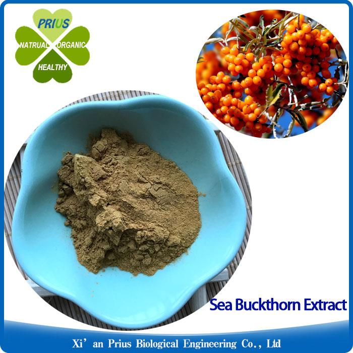 Sea Buckthorn Extract Powder Natural Plant Extract Antibacterial Hippophae Powder