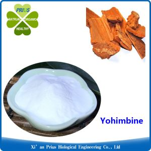 Yohimbe Bark Extract Supplement