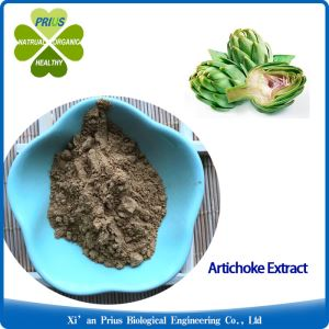 Artichoke Extract Stand Medicine Herb Extract Powder Herbal Medicine Globe Artichoke Extract