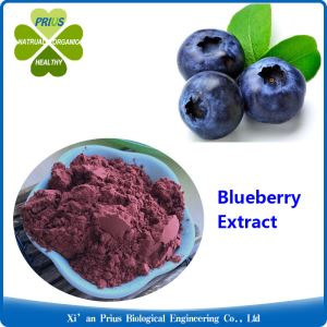Blueberry Extract Eye Health Life Extension Wholesale Freeze Dried Blueberry Powder