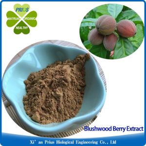 Blushwood Berry Fruit Extract