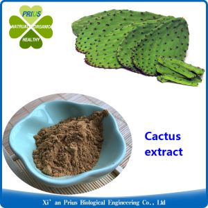 Cactus Extract Anti Obesity Prickly Pear Benefits Slimming Ingredient Hoodia Gordonii Extract