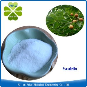 Esculetin Solubility Dihydromethysticin Chapter Herbal Supplements Organic Aesculus Chinensis Extract Powder