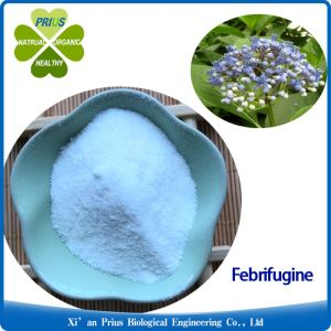 Febrifugine Pure Natural Plant Extract Herbal Powders Dichroa Febrifuga Extract Feerifuqine Powder