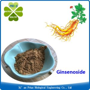 Ginsenoside Ginseng Effects Metabolize Ginseng Extract Ginseng Health Benefits Improve Memory Wild Ginseng
