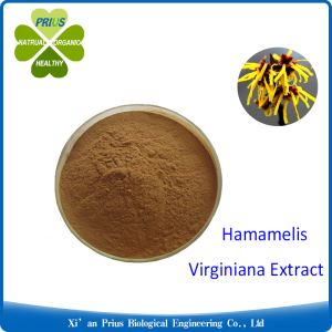 Hamamelis Virginiana Extract Brown Powder Hamamelis Virginiana Bark Leaf Twig Extract