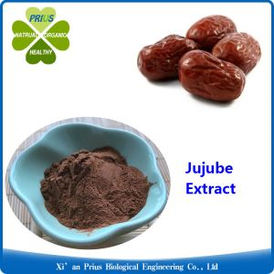 Jujube Extract Red Dates Powder FDA Brown Powder Nutrition Fruit Powder Natural Ziziphus