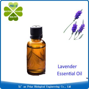 Lavender Essential Oil Acne Treatment Herb Fragrance Organic Lavender Oil