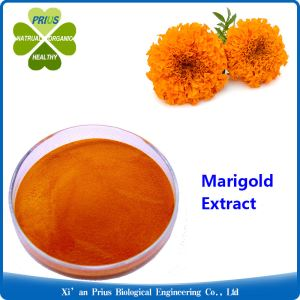 Marigold Extract Process Lutein Orange Pigment Food Grade Marigold Flower Extract