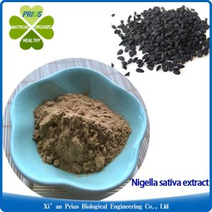Pharmaceutical Grade Nigella Sativa Black Cumin Seed Extract Powder