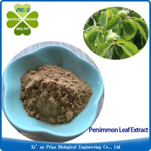 Persimmon Leaf Extract Supply Good Quality Food Additives Anti-diabetes DiospyrosLaki L.Extract
