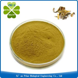 Phellodendron Extract