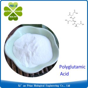 Polyglutamic Acid Moisturized Water Treatment White Powder Cosmetic Grade PGA