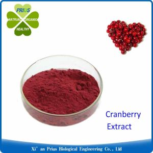Proanthocyanidins Purple Red Powder Cosmetic Grade Material Cranberry Extract Powder