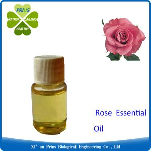 Rose Essential Oil Synthetic Concentrated Floral Scent Type Therapeutic Grade Hot Selling Private Label Rose Oil