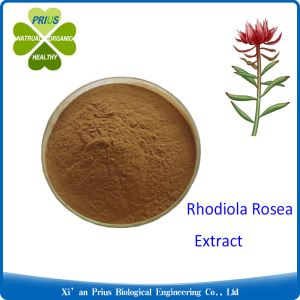 Salidroside Antioxidant Bulksupplements Pure Anti-wrinkle Rhodiola Rosea Extract Powder