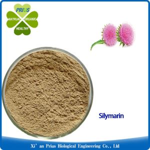 Silymarin Milk Thistle Extract Pure Light Yellow Powder Benefit Liver Cleanse Silybum Marianum Extract