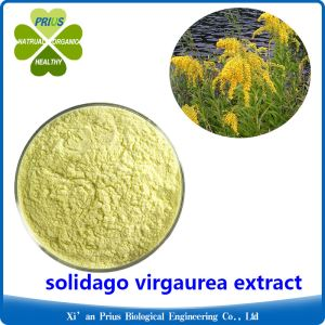 Solidago Virgaurea Extract