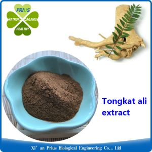 Eurycoma Longifolia Powder Extract