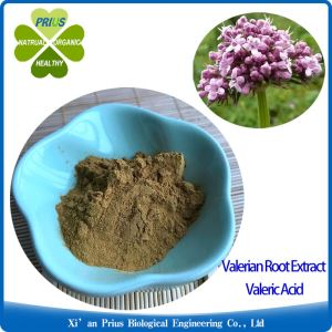 Valerian Root Extract Valeric Acid