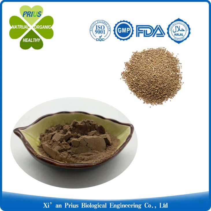 Dodder Extract Powder