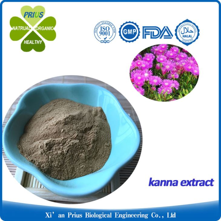 Kanna Extract Powder