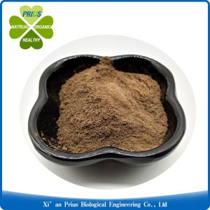 Black Seed Extract Nigella Sativa Extract