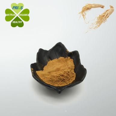 Ginsenoside Rh2 Powder, Ginseng Root Extract