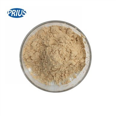Ginseng Extract Ginsenoside Rb1